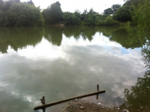 Prees Wood Pool